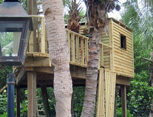 Beachfront Treehouse